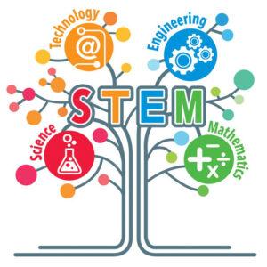 STEM Öğretmen Eğitimi